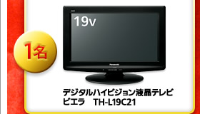 デジタルハイビジョン液晶テレビ ビエラ TH-L19C21 1名