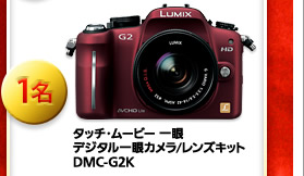 タッチ・ムービー 一眼 デジタル一眼カメラ/レンズキット DMC-G2K 1名