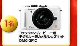 ファッション・ムービー 一眼 デジタル一眼カメラ/レンズキット DMC-GF1C 1名